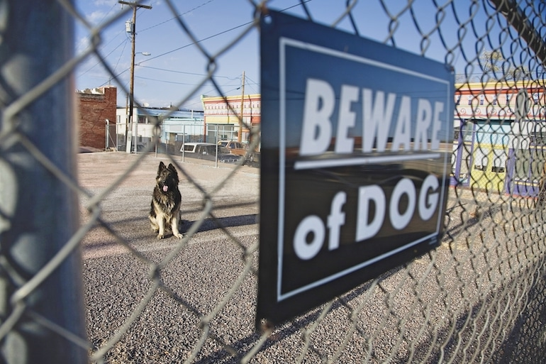 Michigan dog bite lawsuit statute of limitations