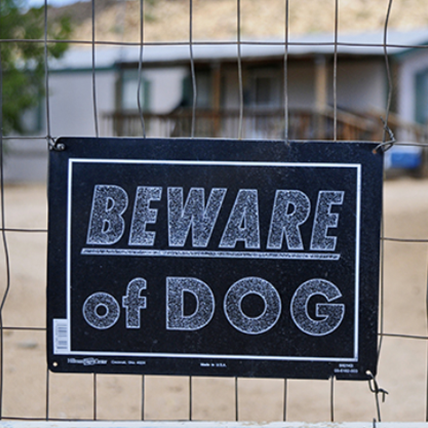 <h5>JUDGE AWARDS $100M IN DOG ATTACK CASE</h5><hr /><p>Our skilled legal team won this landmark symbolic award for our client, Steve Constantine, who was viciously attacked and maimed by his neighbors' 12 dogs while the owner fled the scene.</p>