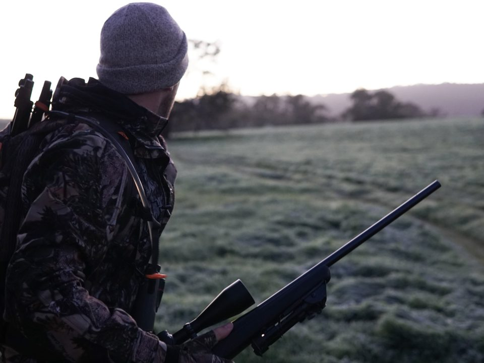 Deer hunting and finding a hunting accident lawyer